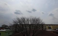 なんか変な天気.jpg
