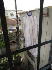 キッチンの窓から見えるごみ置き小屋♪.jpg
