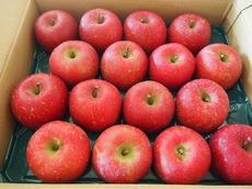 山形のAKEMIさんから美味しいリンゴが.jpg