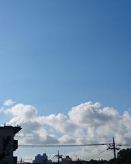 昨日の朝はこんなに晴れて.jpg