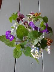 朝 ベランダの花やグリーンを摘んで.jpg