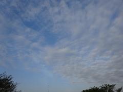 朝6時過ぎ 晴れそうね 良かった~.jpg