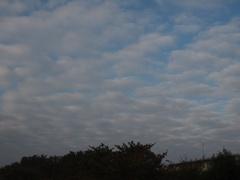 朝7時ごろの雲はこんな風.jpg