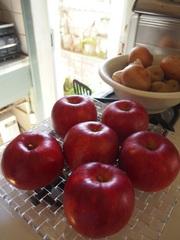 林檎 お安かったです~.jpg