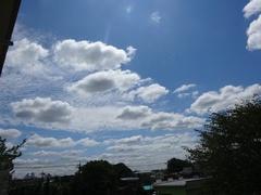 秋の雲 プカプカ.jpg