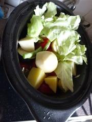 野菜たっぷりです.jpg
