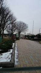 雨が降りそうなので歩いて郵便局へ 寒いわぁ.jpg