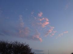 雲が夕日に染まっている.jpg