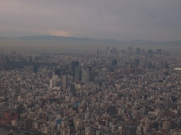 霞む街と富士山.jpg